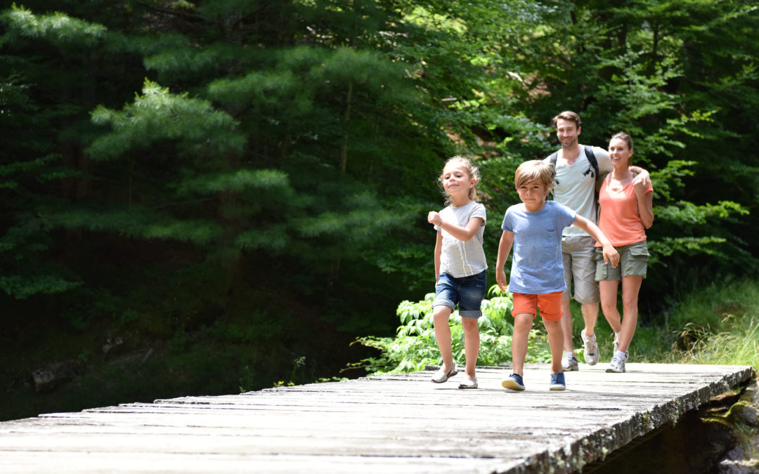 5 Reasons Our Tours Are One of the Best Family Activities in Gatlinburg TN